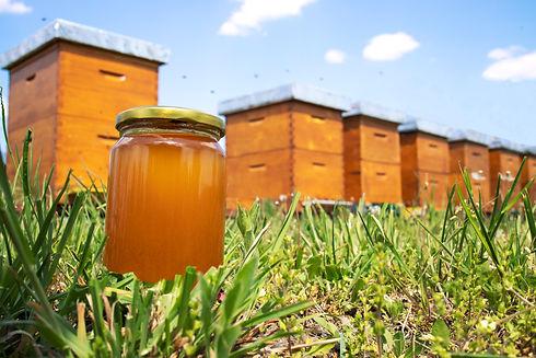honey-jar-beehives-meadow-springtime.jpg
