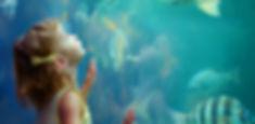 Girl at Aquarium
