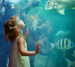 Fille à l'Aquarium