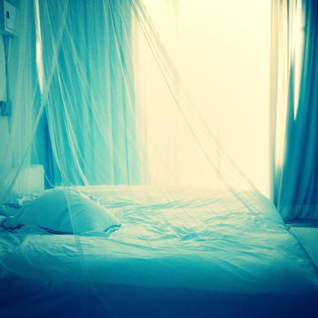 .COM Life | 冬眠