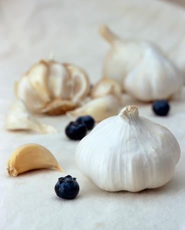 Hoffman_Kelly_Garlic
