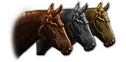 metal-horses-clayoo2-emboss-sample.jpg