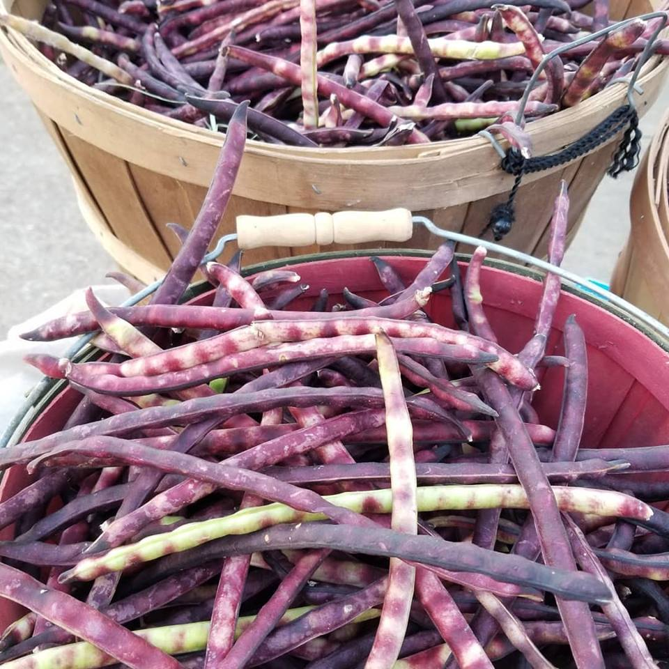 Easley Purple Hull Peas