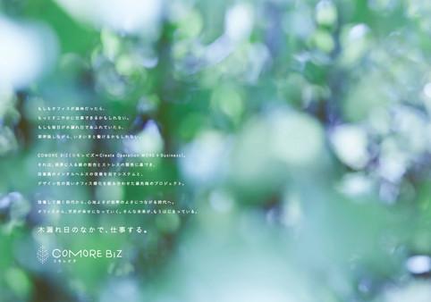 E_comore-02.jpg