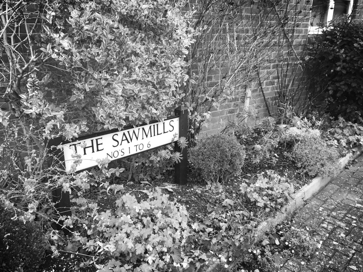 The Sawmills