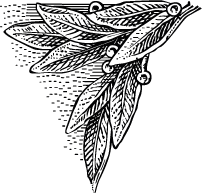 Kompozycja%20164_edited.png