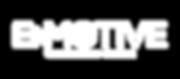 2019-Enmotive-Logo_Enmotive-White-Horizo