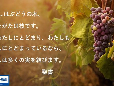 『イエス様はぶどうの木』 2021/03/28のメッセージノート