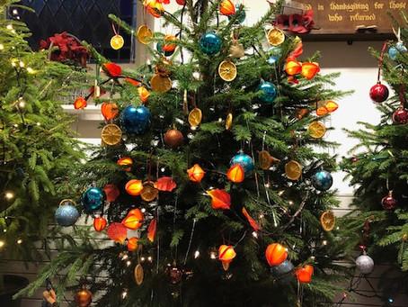Bridport Christmas Tree Festival