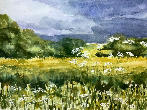 'Yellow Fields and Cowparsley' watercolour
