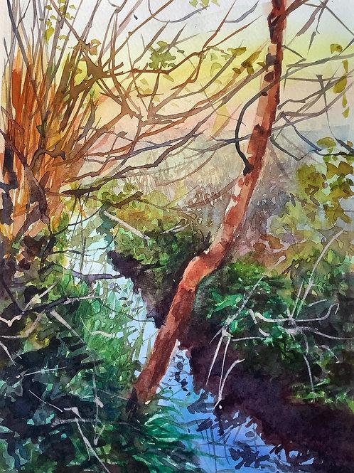 'Orchard Stream' watercolour