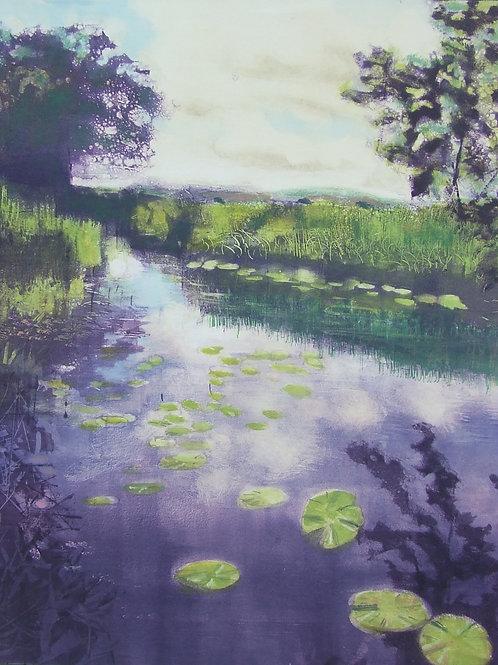 'Lily Pond' monoprint