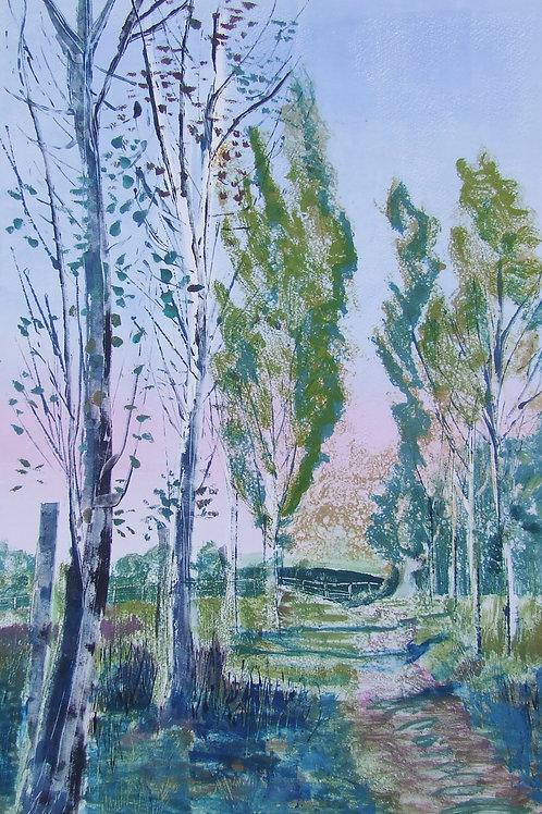 'Sissinghurst Poplars' monoprint