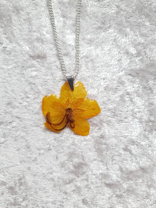 Collier argent et fleurs séchées