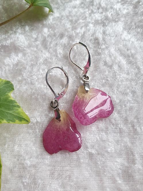 Boucles d'oreilles argent et rose séchée