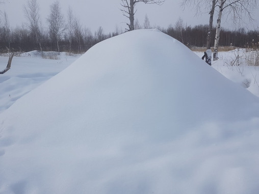 Что нам стоит дом построить? Пусть из снега... всё равно!