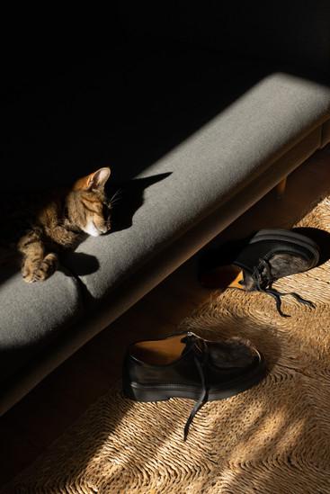Sally Shoes.jpg