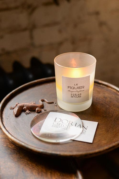 'Le Figuier' scented candle by Dorian Caffot de Fawes