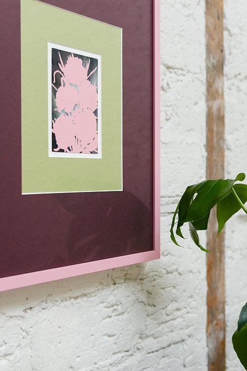 Pink 'Queer Flower' by Kavel Rafferty