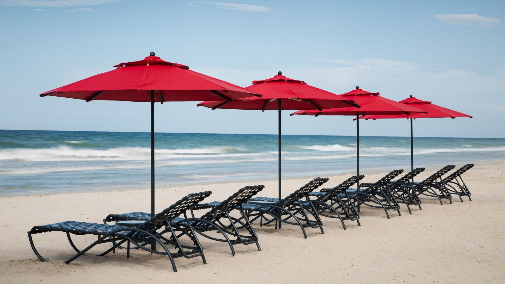 ld plus palm beach 8