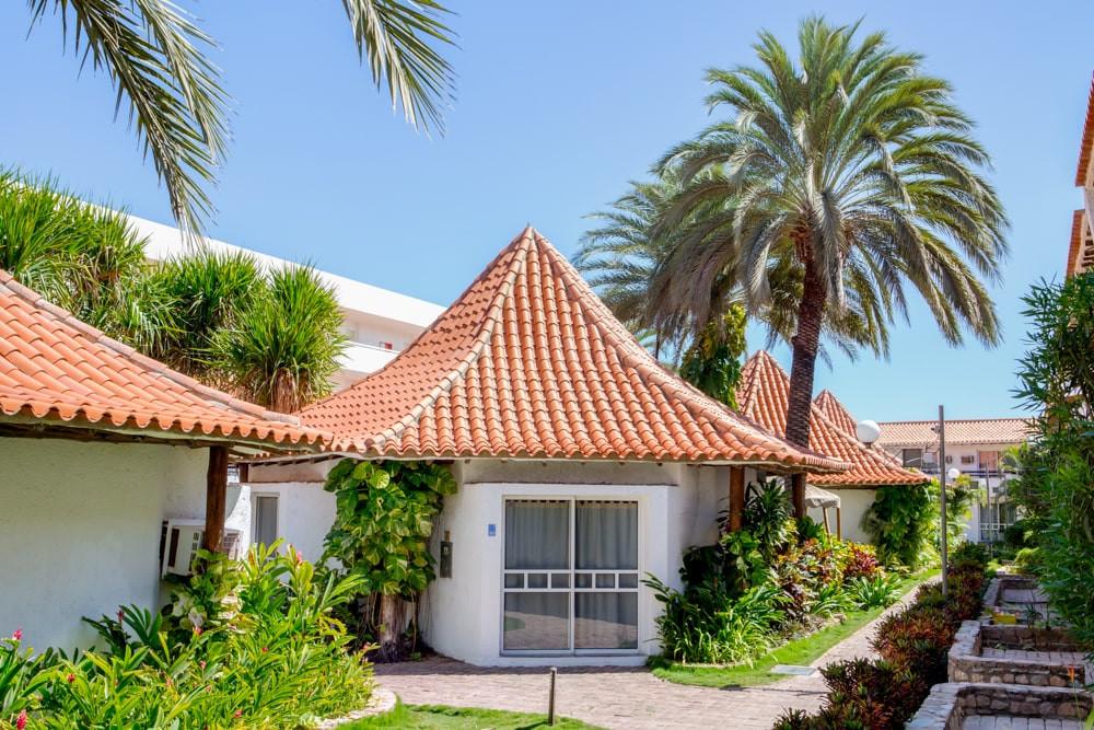 LD Palm Beach 6-min.jpg