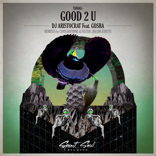 Dj Aristocrat Feat Gosha - Good 2 U