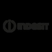 indesit-vector-logo.png