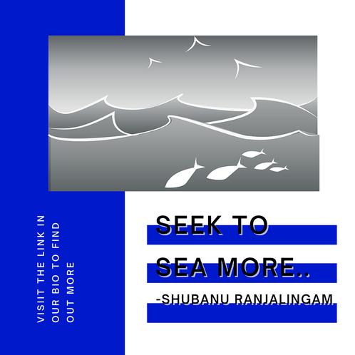 Seek to SEA more!