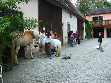 Pferde_Kinder1.JPG