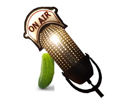 Cynthia & Stefan's Radio Pickle Pilot Reading Links 3 Countries