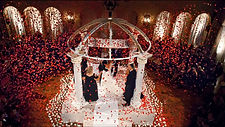 Times Square Confetti's red biodegradable tissue rose petals highlight the wedding kiss
