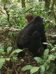 Cindy with gorillas - mom and baby copy.
