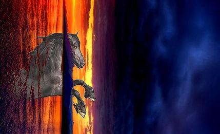 SMTV horse.jpg