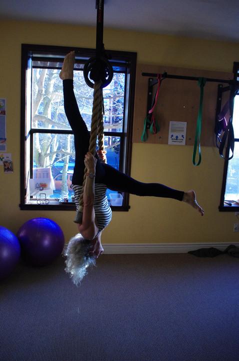 Monkey Gym