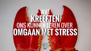 Leren Over Omgaan Met Stress