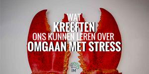 wat kreeften ons kunnen leren over omgaan met stress