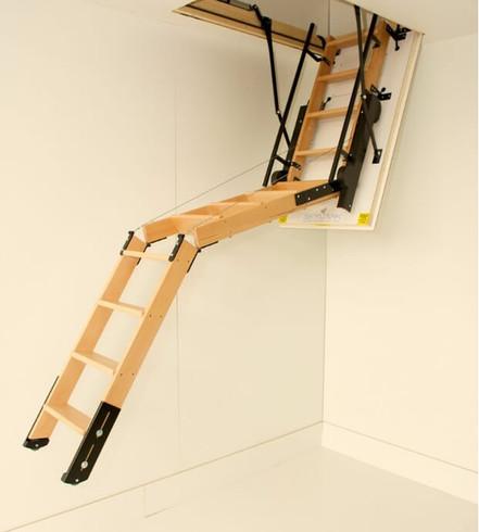 Skylark Electric Ladder