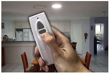 redilight remote.PNG