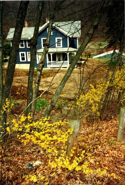 New England 1992