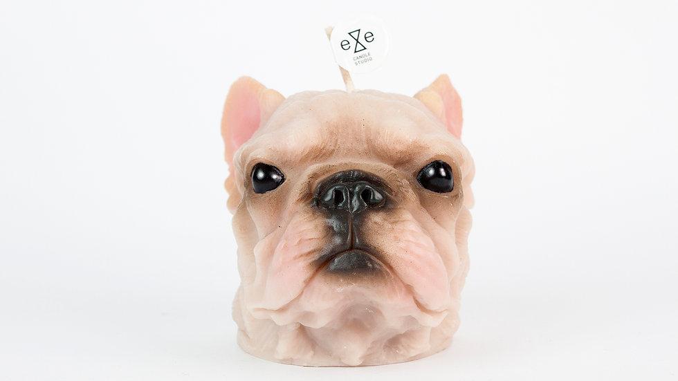 French Bulldog Painted