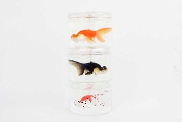 eye candle studio fish candle bubble eye