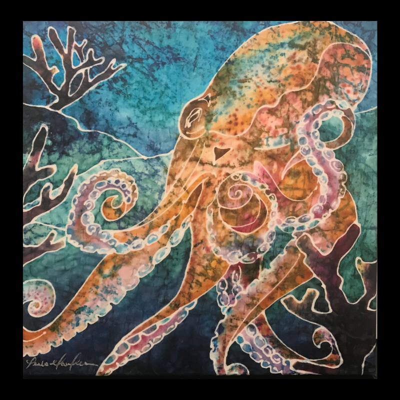 Amy's Octopus