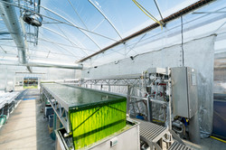 Open thin-layer photobioreactor