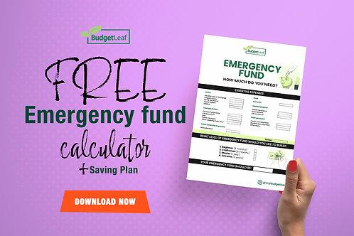 FREE DOWNLOAD - Emergency Fund Calculator