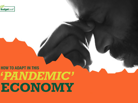 How to adapt in this PANDEMIC ECONOMY