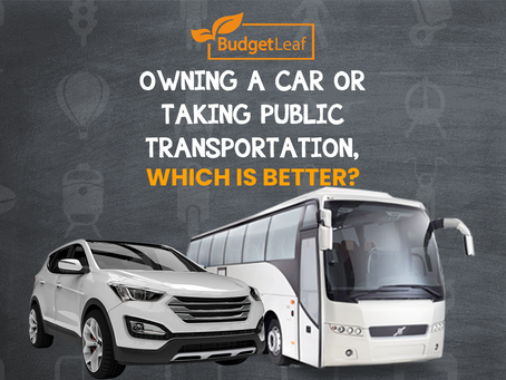 Owning a car or taking public transportation, which is better?