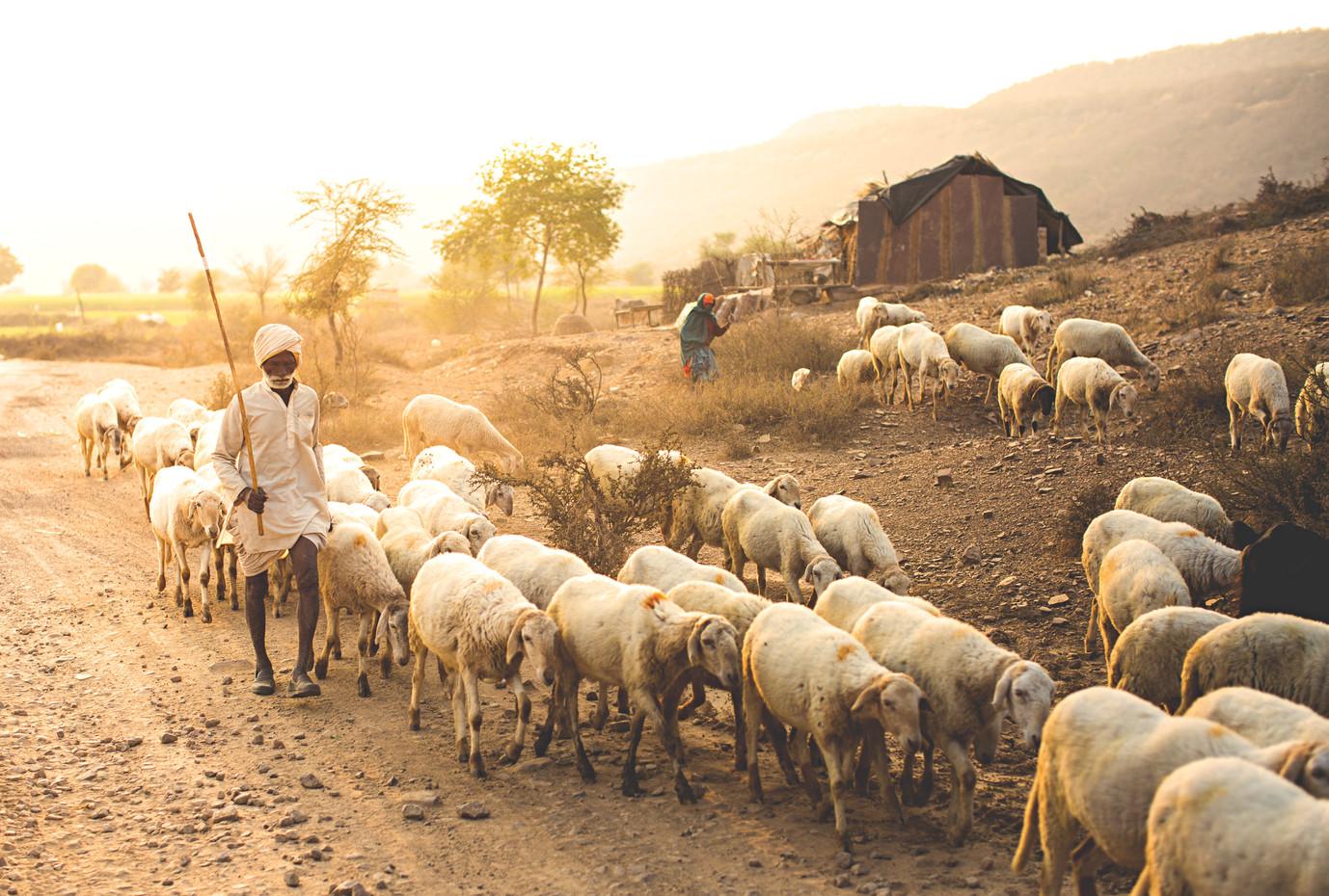 kamilo_bustamante_india_5_18.jpg