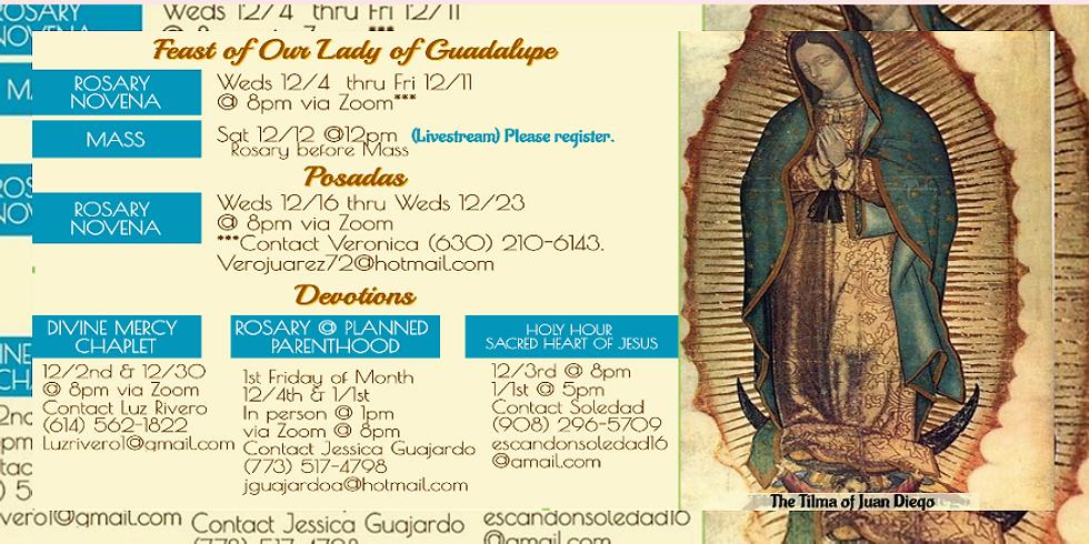 Saturday 12/12th 12pm Mass