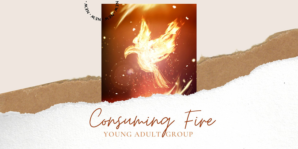 Consuming Fire Young Adult Group Gathering starts 2/16th!