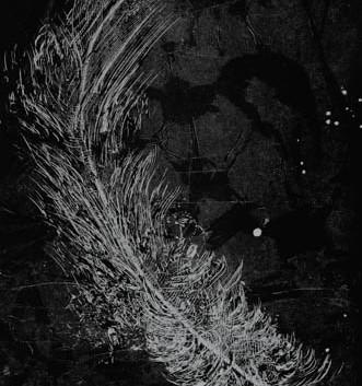 6.02.8 Night Fly.jpg